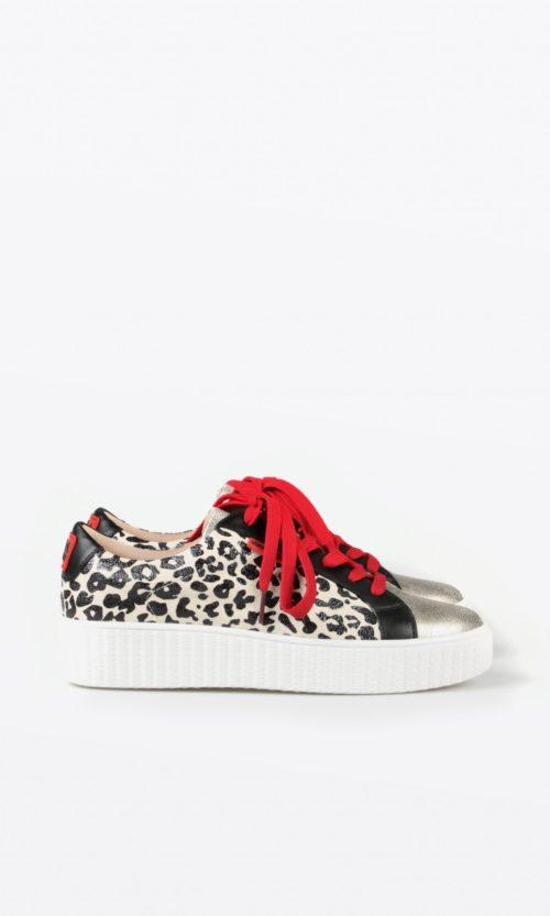 sneaker-leopardo-estampado-12130001-lolacasademunt